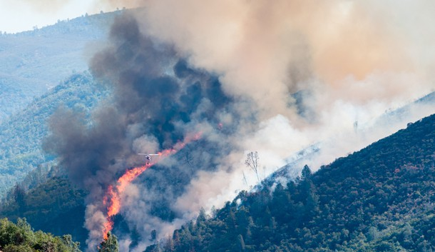 Alert: Wine Country Wildfire – Evaluating Business Interruption / Tips For Mitigation Loss